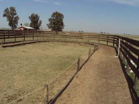 Corral redondo para caballos